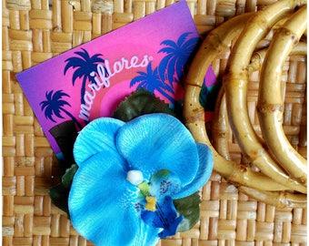 Mini Blue Orchids