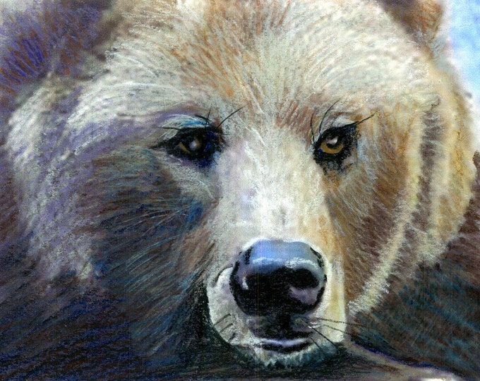 Grizzly Girl From Montana -Original Prismacolor Painting - Grizzly Bear Prints and Cards