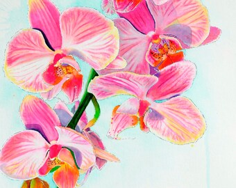 """Orchids 11"""" x 17"""" Watercolor Illustration"""