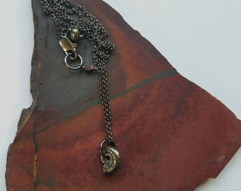 Baby Ammonite on Chain