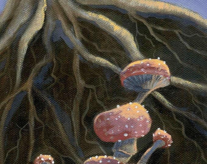 Mushroom Patterns greeting card