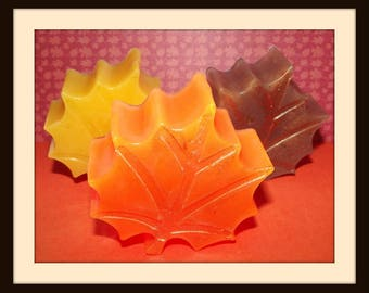 Leaves Are Falling Glycerin Soap Set, Fall Soap Set, Leaf Soaps, Autumn Soap, Orange Cinnamon and Clove Soap, Cinnamon Soap