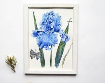 6x8 painting| Iris painting| Flower watercolor| Small painting| Watercolor blue painting| Original watercolor| Bright painting| SUMMER BLUE