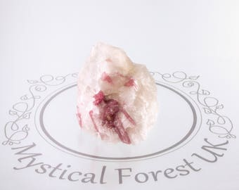 Pink Tourmaline Crystal In Quartz Gemstone Healing Crystals October Birthstone Reiki Rubellite Self Care Self Love