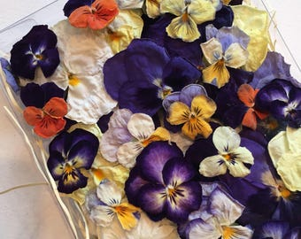 Dry Violas and Pansies, Real Dried Flowers, Wedding, Table Decor, Centerpiece, Flower Girl, Dried Pansies, Craft Supplies, Cake Decorations