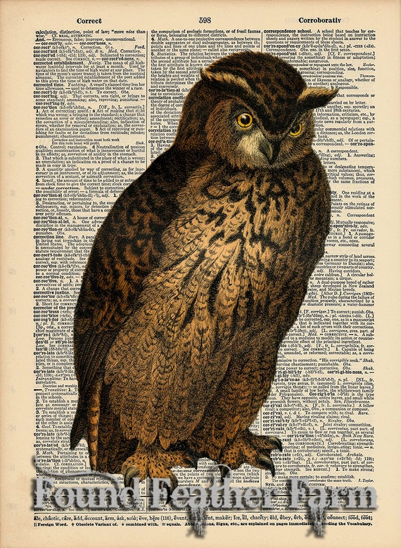 """Vintage Antique Dictionary Page with Antique Print """"Owl Five"""""""