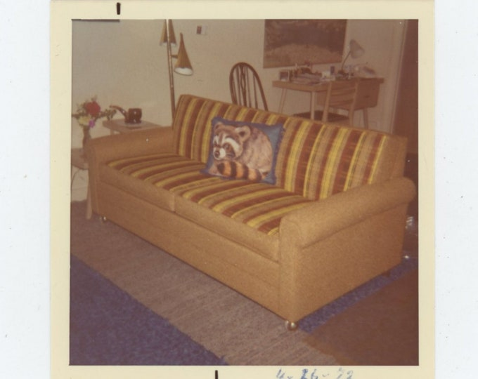 Vintage Snapshot Photo, 1972: Raccoon Pillow on Couch [84664]