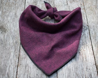 Purple Expedition Dog Bandana
