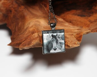 Wild Horse On Vieques Puerto Rico Black And White Art Photo Pendant With Chain Handmade Jewelry Necklace Silver Charm Cabochon Romance Love