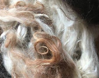 Llama Fiber - Raw Llama Fiber - Llama Fleece - Unwashed Fiber - Raw Llama Wool - multicolor - Fiber to card - Fiber to spin - (1)