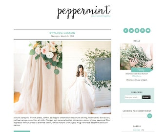 Blogger Template Premade Blog Theme Design Peppermint - Mint, Photography