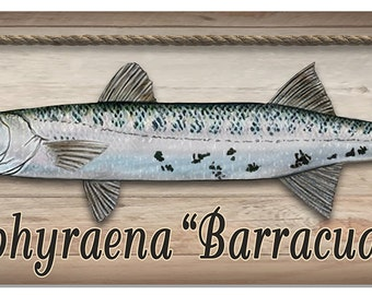 "Barracuda Wall Sign 3-7/8"" x 10-1/2"" Metal Plaque Personalize Any Text Deep Sea Ocean Outdoor Safe"