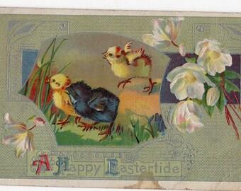 Easter vintage postcard Easter chicksantique postcard, Easter flowers, embossed, Easter Greetings vintage postcard