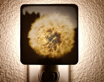 Dandy Lion Night Light