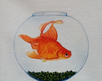 lucky gold fish
