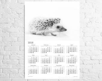 Wall calendar 2018 Hedgehog Original A3 poster with African hedgehog Nursery wall art Gift from woodland Hedgie baby gift