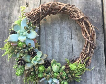 Living Succulent Wreath On 6 Inch Base