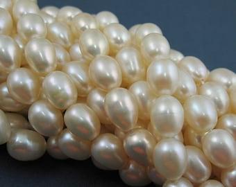Pearls - Creamy White Pearls-Freshwater Pearl -Grade AA Rice Shape Pearls - Genuine Freshwater Pearl Strand- 15.5 inch (7-9mm)  Sku: 301209