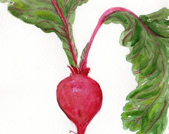 Beet watercolor painting original, rustic painting 5 x 7, beet art, original painting beets, food art, SharonFosterArt, rustic painting
