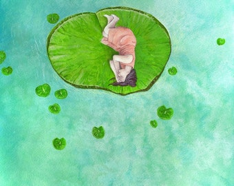 Lily Pad Dreams, a print from an original watercolour painting by Irene Owens