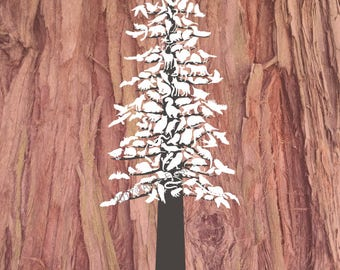 Redwood Forest Animals Wall Decor Wood Background Art Print