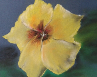 Pastel dry representing a hibiscus flower