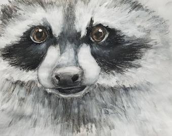 Close-up of a Raccoon Face