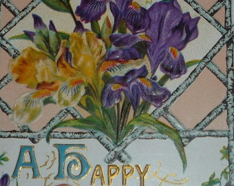 Beautiful Yellow and Purple Bearded Irises on Antique Birthday Postcard