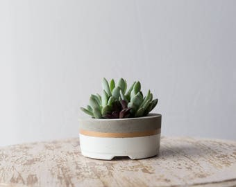 Small Concrete Planter, White & Gold