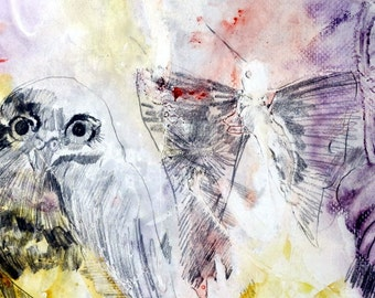 Framed and Matted Watercolor and Pencil Painting of an Owl and a Hummingbird