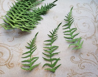 Die cut Fern Embellishments.  #H-42