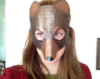Bear mask, bear costume