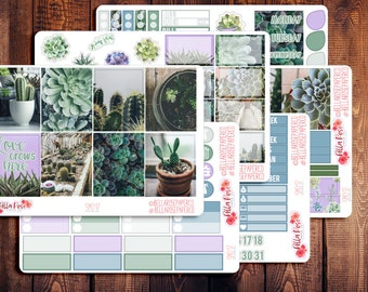 Succulent Photography Planner Sticker Kit, for use in Erin Condren Life Planners, Happy Planner Sticker Kit, Succulent Planner Sticker SM017