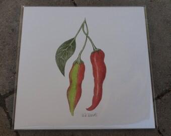 Print of Beautiful Hand Drawn Chilies