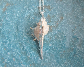 Shell necklace, beach necklace, summer necklace, summer jewelry