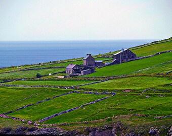 Irish Farm I- fine art print- fine art photography- Ireland photography- farm photography- landscape- home decor- wall art- nature photo