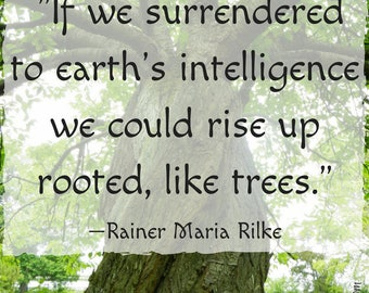 Quote and Art Digital Print| If we surrendered to earth's intelligence we could rise up roooted, like trees. | Quote by Rainer Maria Rilke
