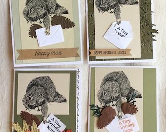 Raccoon Birthday Card Set