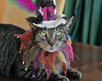 Cat Birthday Hat and party collar- Cat Birthday Hat /Dog Birthday Hat -Dog_Cat Birthday -Cat_Dog Party Collar