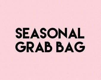 SEASONAL Grab Bags! *Mostly winter/Christmas stickers!* 8 Sheets of Assorted Seasonal Holiday Planner Stickers! (Seasonal GRAB)