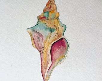 Gorgeous Rainbow Conch shell watercolor origainl painting