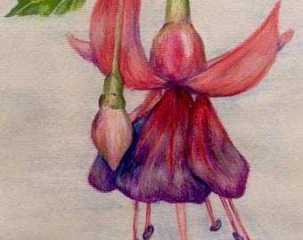 Original art,Fuchsia flower and bud