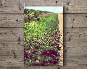 Country Road / Rural Illinois Landscape / Nature and Travel Photography Print / Agriculture Farm Wall Art / Late Summer / Rustic Home Decor