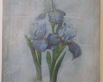 Iris Flower Art Etsy