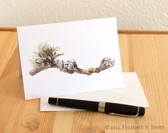Lichen Blank Notecard