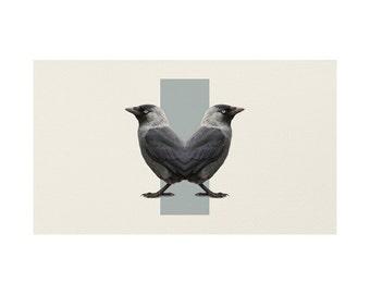 Birds Rug - Double Animals
