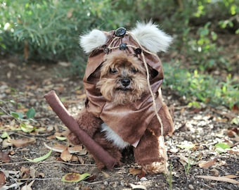 Good Outfit Army Adorable Dog - il_340x270  Photograph_3360  .jpg?version\u003d0
