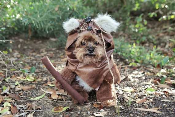& Adorable Furry Reddish Brown Woodland Dog Halloween Costume