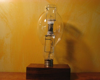 Re-Purposed Light Bulb(1)
