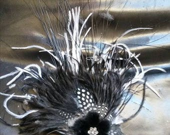 Chic!  a feather d brooch ' black and white ostrich